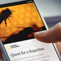 Will Facebook Save Old Media With Instant Articles?